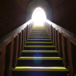 Life Improvement Steps
