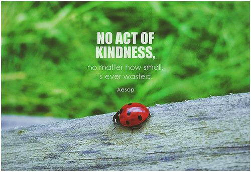 kindness sayings photo
