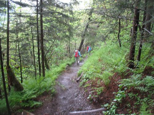 apalachian trail photo